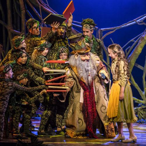 Scene uit musical De Sprookjessprokkelaar